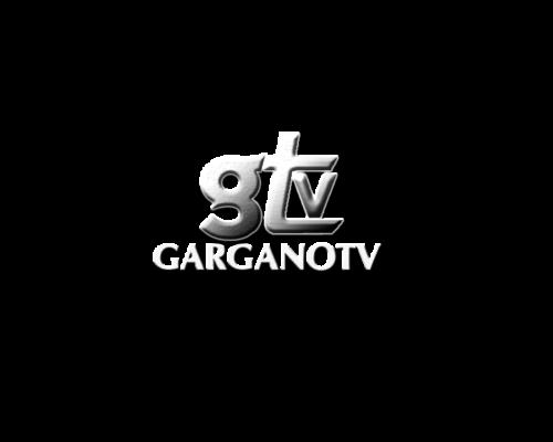 Logo_GTV_2016