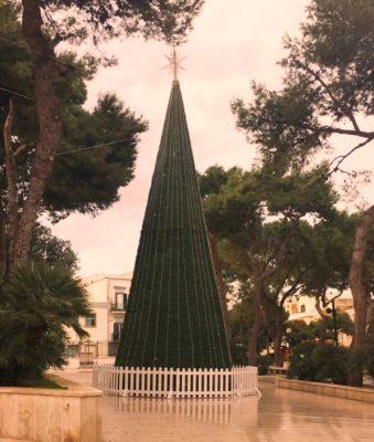 Natale 2016 Comincia La Festa Con L Accensione Dell Albero E Delle