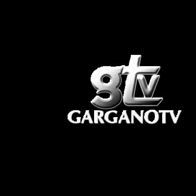 cropped-Logo_GTV_2016.png