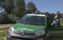 PESCHICI - Carabinieri forestali: lotta all'abusivismo e deturpazione del paesaggio